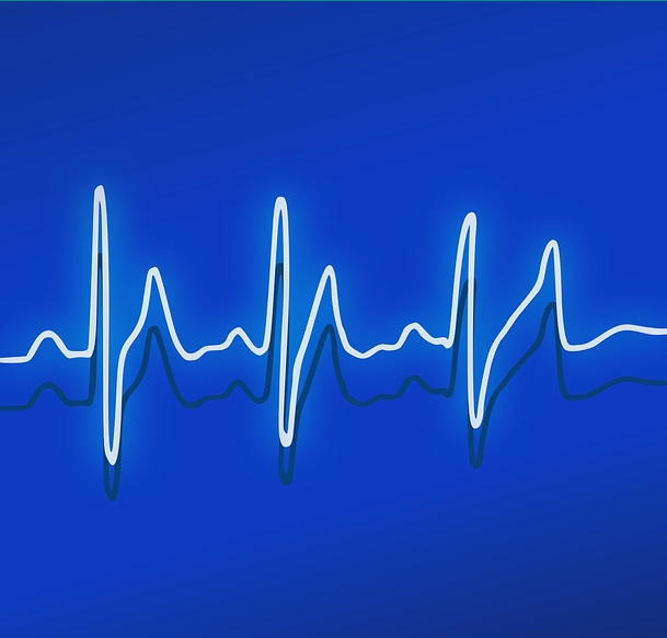 Risiko Herzinfarkt Vegetariern geringer