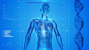 Bauchfett erhöt Risiko Lungenkrebs