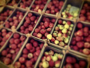 Weniger Allergien mit alten Apfelsorten