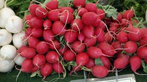 98,9% an Obst und Gemüse unbedenklich