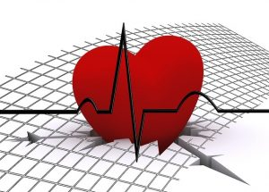 Trainingspuls Ausdauer Gesundheit