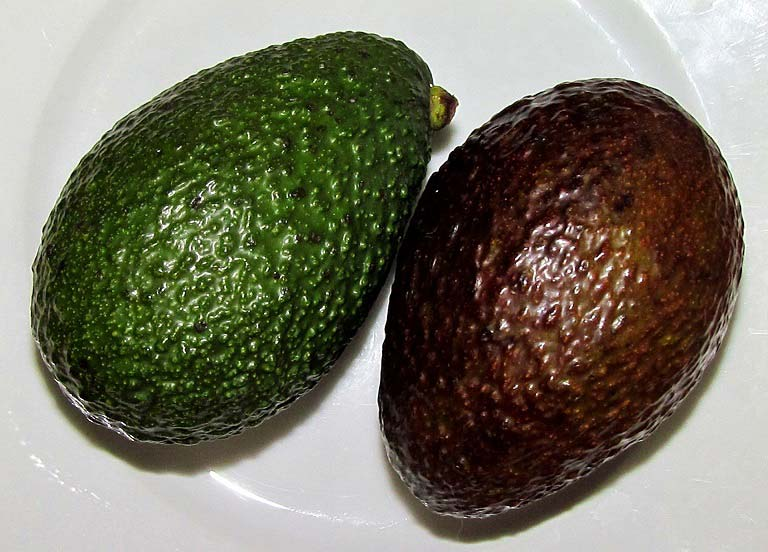 Gekaufte Avocado aus dem Handel