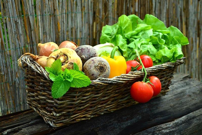 Wer seinen Stoffwechsel ankurbeln möchte, der sollte darauf achten richtig zu essen