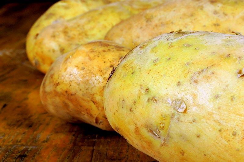 Kartoffel Inhaltsstoffe
