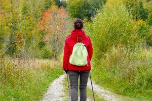 Studie Ernährung beeinflusst Menopause
