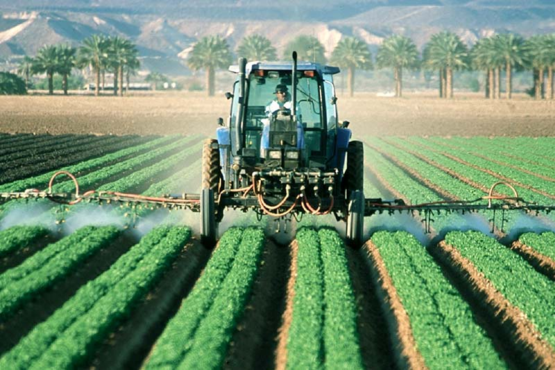 Pestizidbelastung Obst Sorten