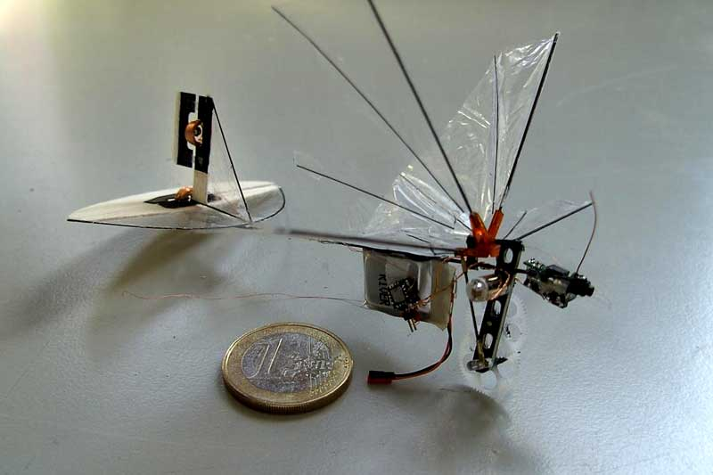 Delfly Drohne Biene