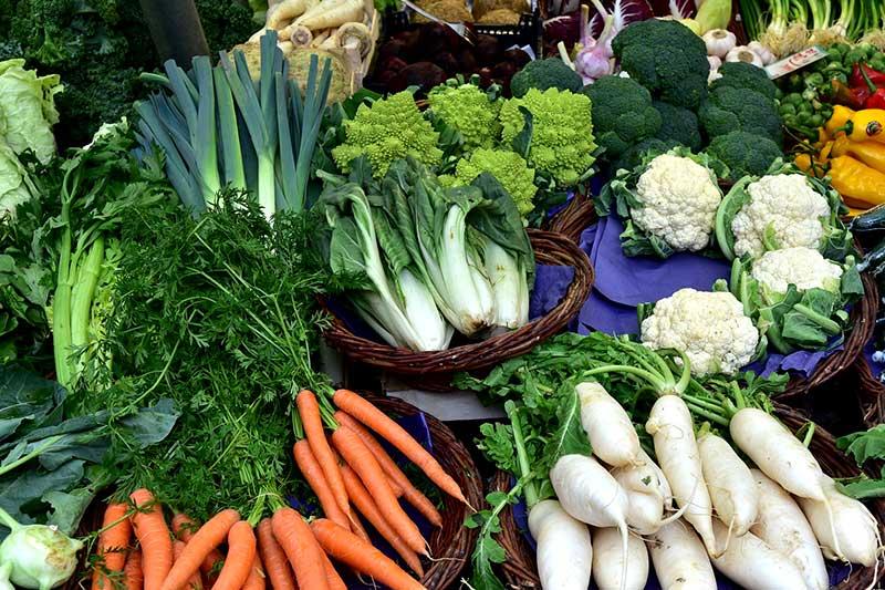 Biozyklisch-veganer Gemüseanbau verdoppelt Erträge