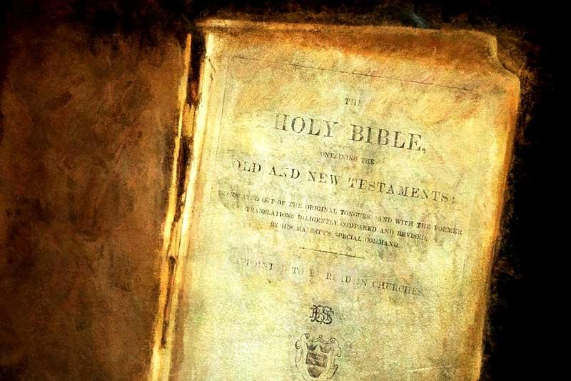 Veganismus Christentum Bibel