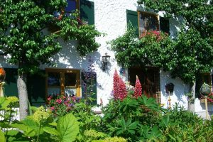 Städte sagen Steinwüsten im Vorgarten den Kampf an