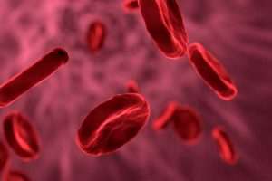 Besser abnehmen durch einen Bluttest?