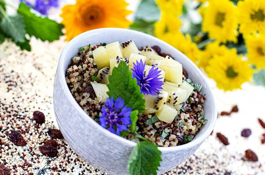 Quinoa Frühstück Kiwi Rezept vegan