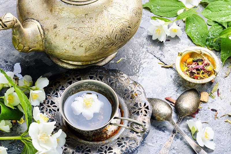 Grüner Jasmin Tee