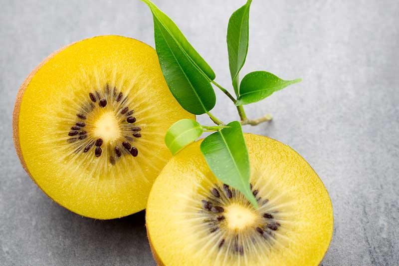 gelbe Kiwi