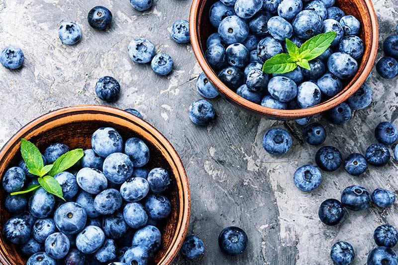 Heidelbeeren Inhaltsstoffe Antioxidantien