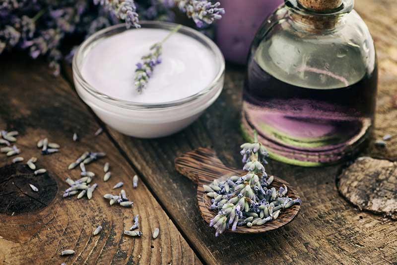 Lavendel Wirkung